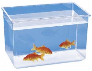 Фото Пластиковый аквариум-отсадник Nettuno (без крышки) от Ferplast