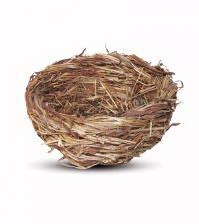 Фото Гнездо плетёное с ветками для птиц плоское, 120х55 мм PT6185