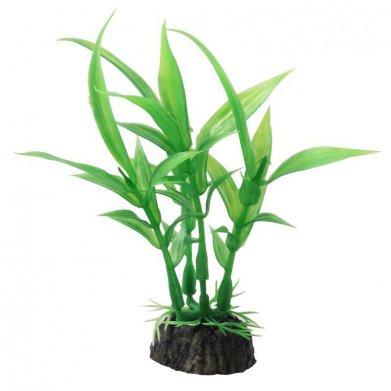 Фото Растение Triol 1029LD