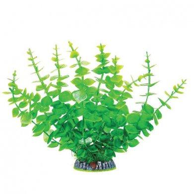 Фото Растение Laguna 30005AP с распылителем