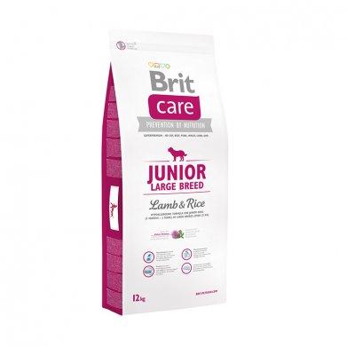 Фото Brit Care Junior Large Breed для щенков крупных пород, ягнёнок с рисом